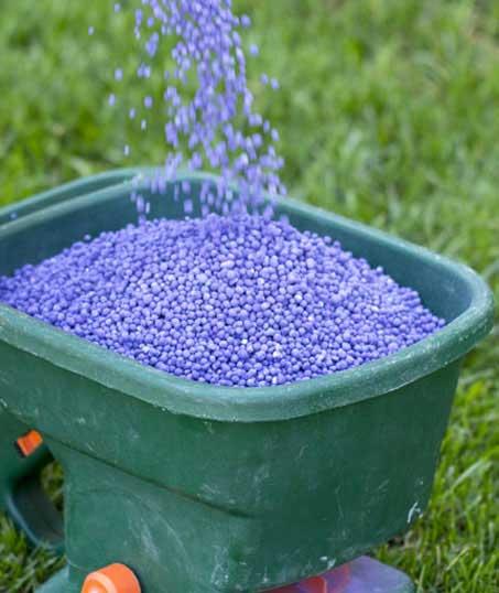ProScape Lawn Fertilization