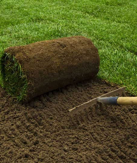 ProScape Landscaping Sod Installation
